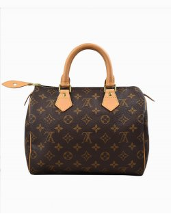 Bolsa Louis Vuitton Speedy 25 Monograma